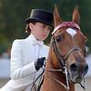 Rock Creek Horse Show :